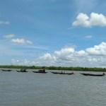 Sundarban-Boat