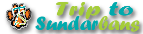 trip to sundarbans logo