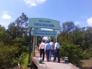 sundarban national park India