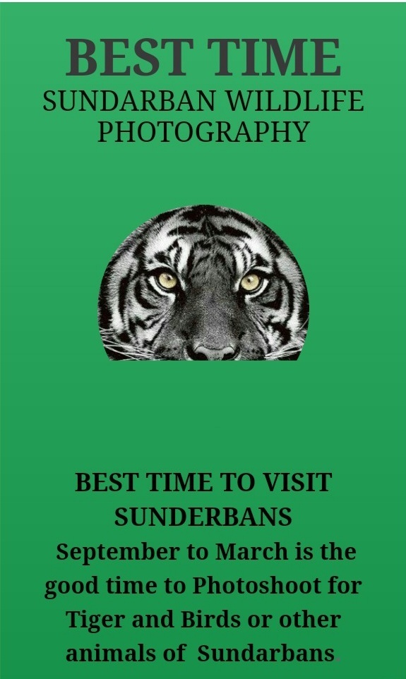 Sundarban Wildlife Photography
