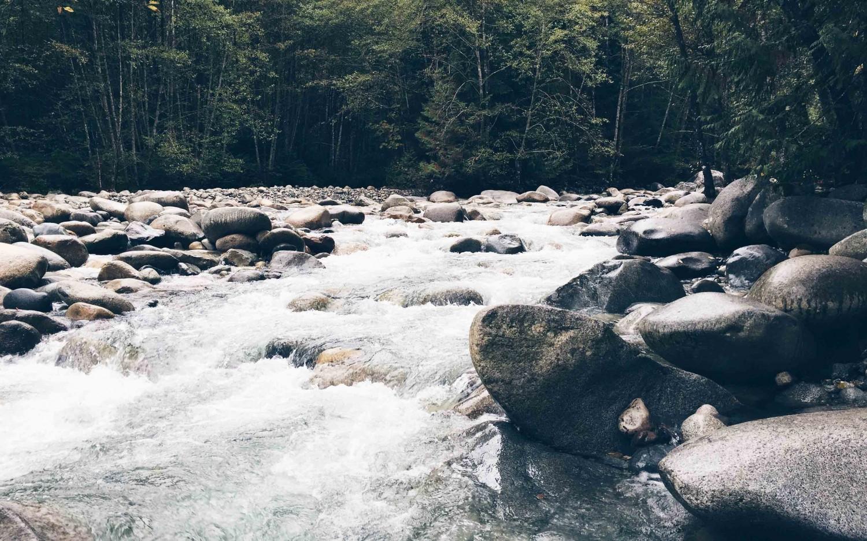 Image result for Kasol Tripver