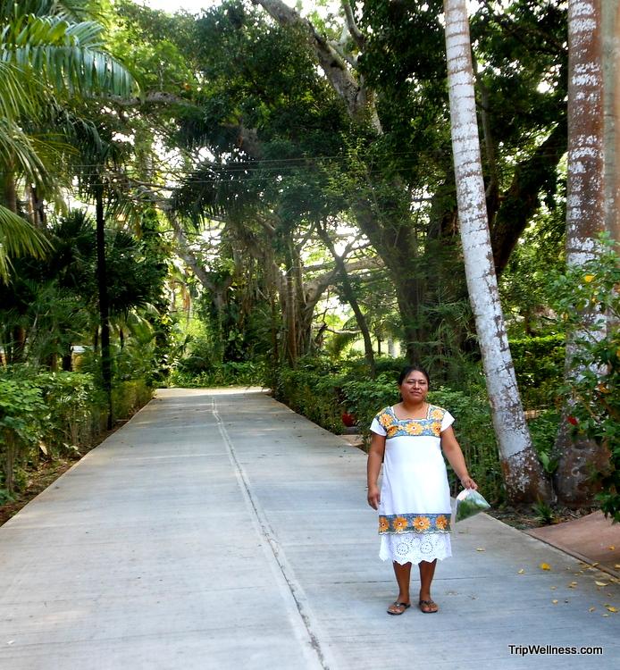 Mayan healer with herbs, Hacienda Chichen, trip wellness