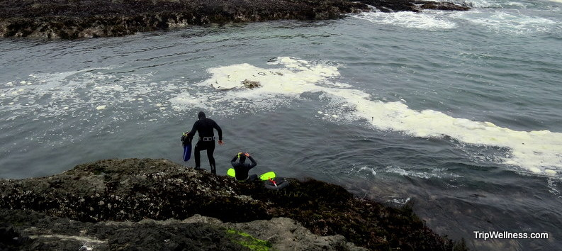 Free diving for wild Abalone on the Mendocino coast