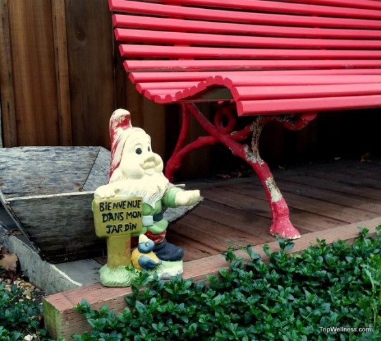 Metro Hotel garden in Petaluma