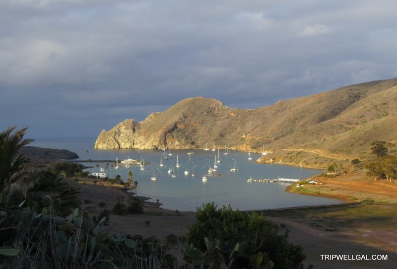 Catalina Harbor from Banning House, best pictures