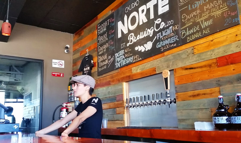 Norte brewing company is one of the best food in Tijuana spots for the casual drinker