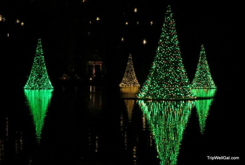 Longwood light reflections