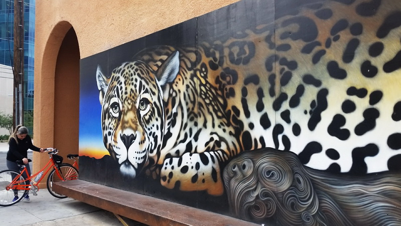 The El Jefe mural is new in Tucson. It honors one of the two, wild Jaguars left in the United States.