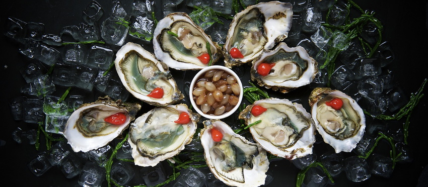 Oysters and Champagne – Seafood in Sydney