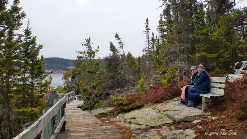 A quiet bench along the Parc Saguenay trail