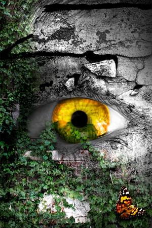 Eye Manipulation