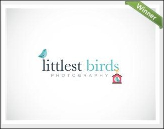 Logo For Photography Business