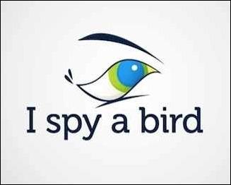 i-spy-a-bird