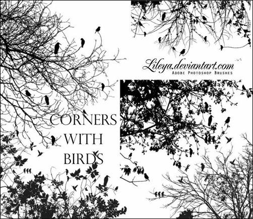 corner-brushes