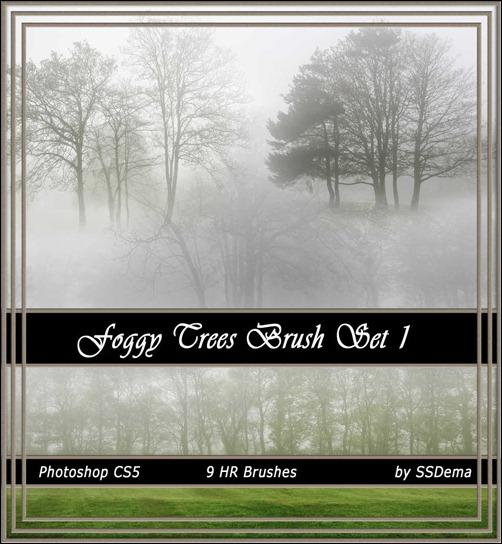 foggy-trees-brsuhs-set