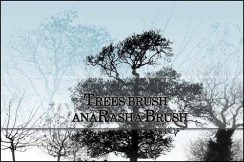 tree-brushes[3]