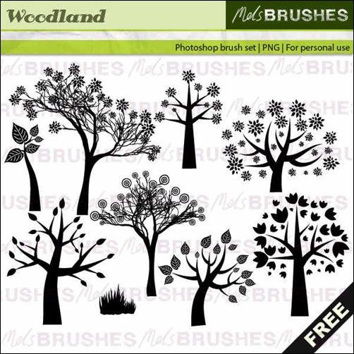 woodland-brushes