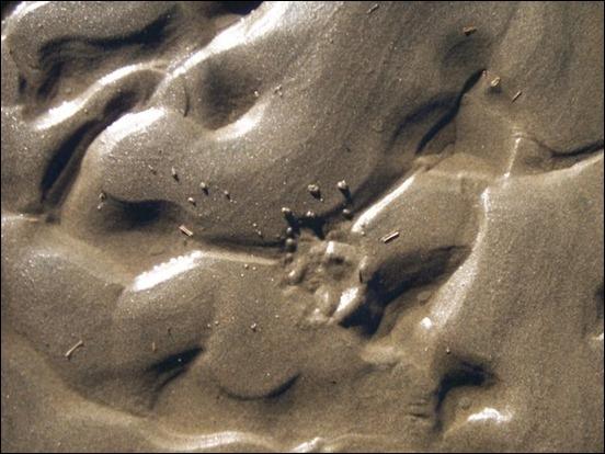 texture-76