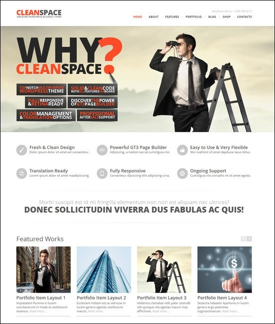 cleanspace-retina-ready-business-wp-theme