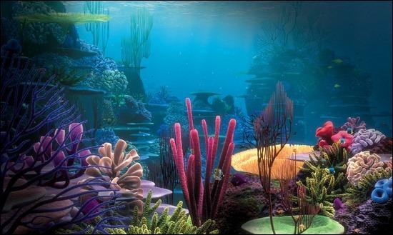 jellyfish-underwater