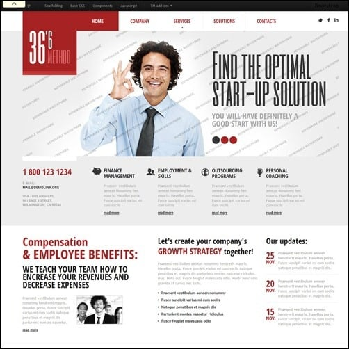 White Management business website template