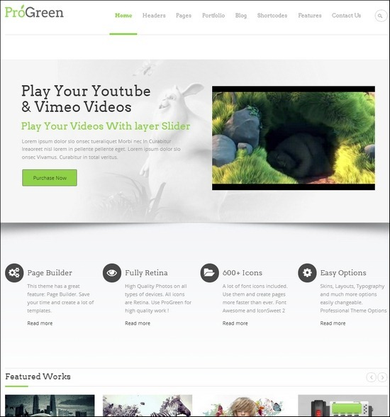 pro-green-retina-responsive-theme