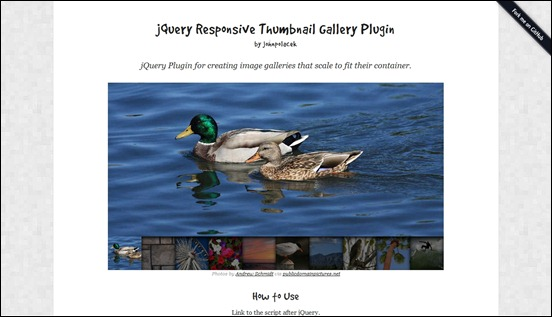 Being a free responsive jQuery gallery plugin this is a really cool script for websites that need a way to feature images
