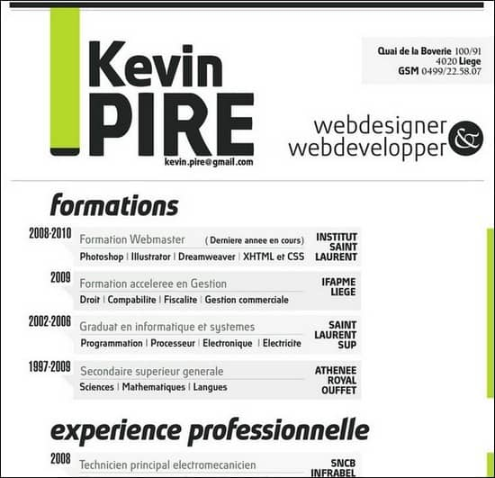 50 Great Examples Of Creatively Designed Resumes