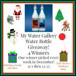 My Water Gallery Water Bottle #Giveaway Ends Dec. 25 ENDED