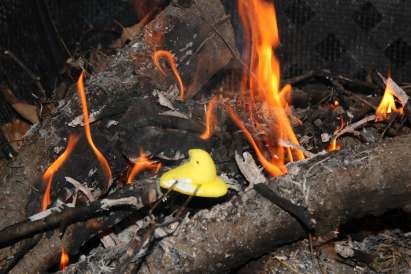 Have you tried marshmallow Peeps roasted over a fire?