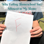 Why Failing Homeschool Isn't Allowed in My Home