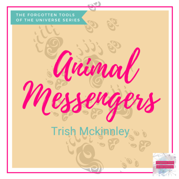 Animal Messengers Thumbnail