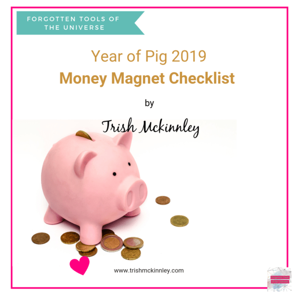 Year of Pig Money Magnet thumbnail