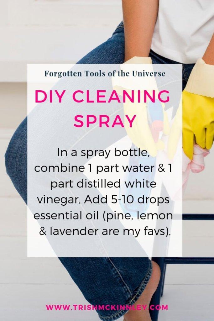 DIY Cleaning Spray