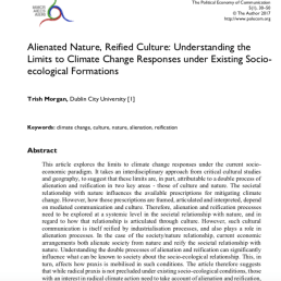 Journal article on alienation, reification and ecological issues