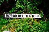 Mayroyd