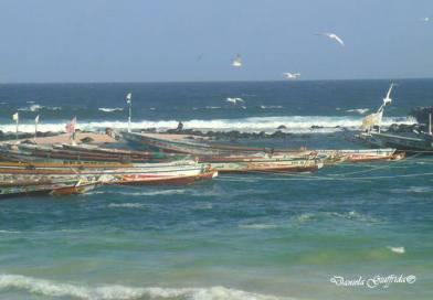 SENEGAL – ULTIMA SPIAGGIA: LE CANARIE – IN 426 ANNEGANO NELL'ATLANTICO