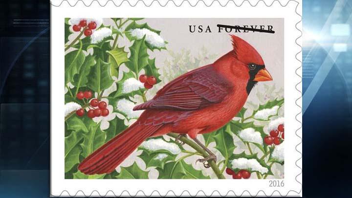 forever stamp northern cardinal web_1470764618976.jpg