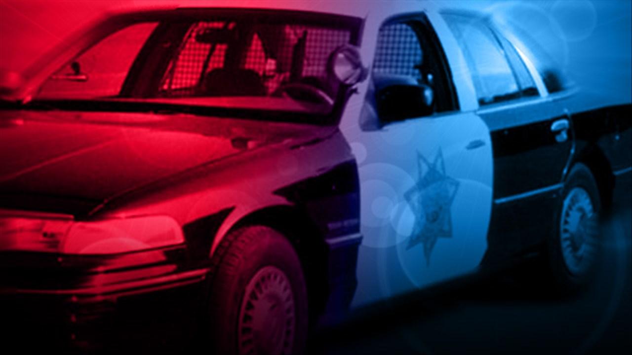 police car_1489016411598.jpg