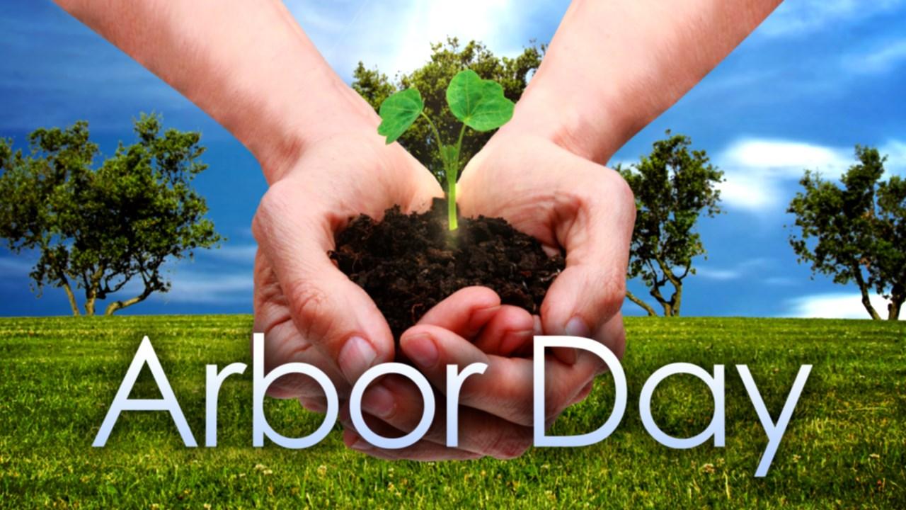 arbor day_1556277490042.jpg.jpg