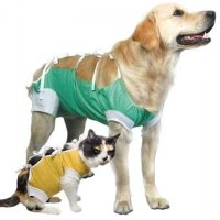 After Surgery Wear Durable - XX-Large - Triton Animal