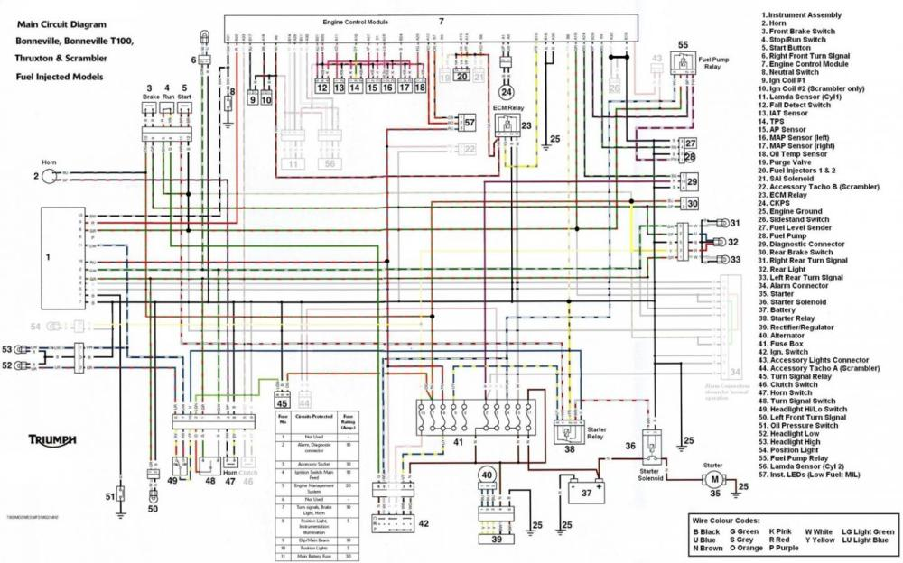 medium resolution of 1974 tr6 wiring diagram wiring diagram todays rh 1 9 12 1813weddingbarn com 110 atv wiring