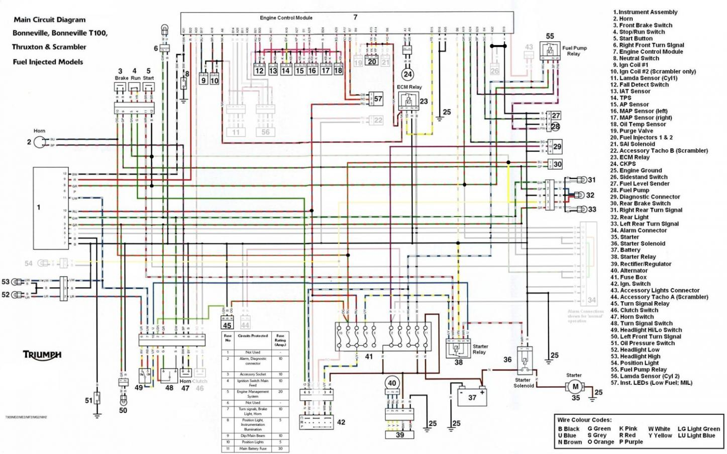 Wiring Diagram Triumph Tc910