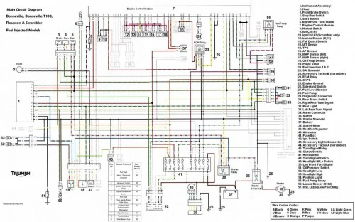 small resolution of 1974 tr6 wiring diagram wiring diagram todays rh 1 9 12 1813weddingbarn com 110 atv wiring