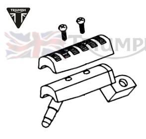 Triumph Sprint Rs 955I Ersatzteile