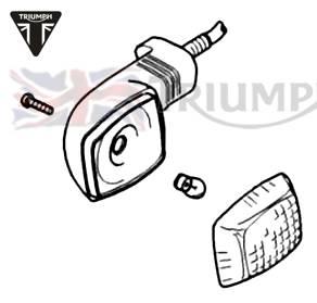 Triumph Speed Triple Blinker Speed Triple T509 bis