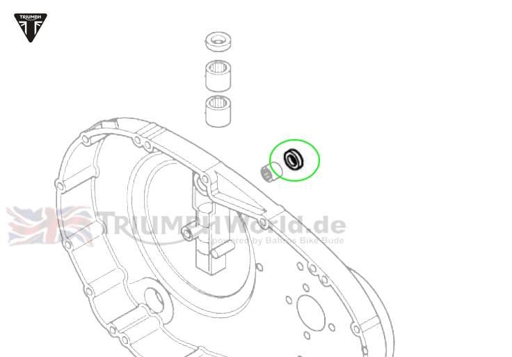 Triumph Daytona 955i Simmerring Schaltwelle Daytona T595