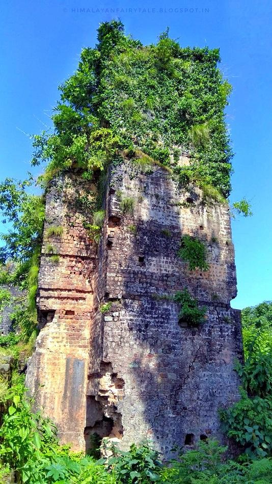 Hanging Garden in Rehlu Fort
