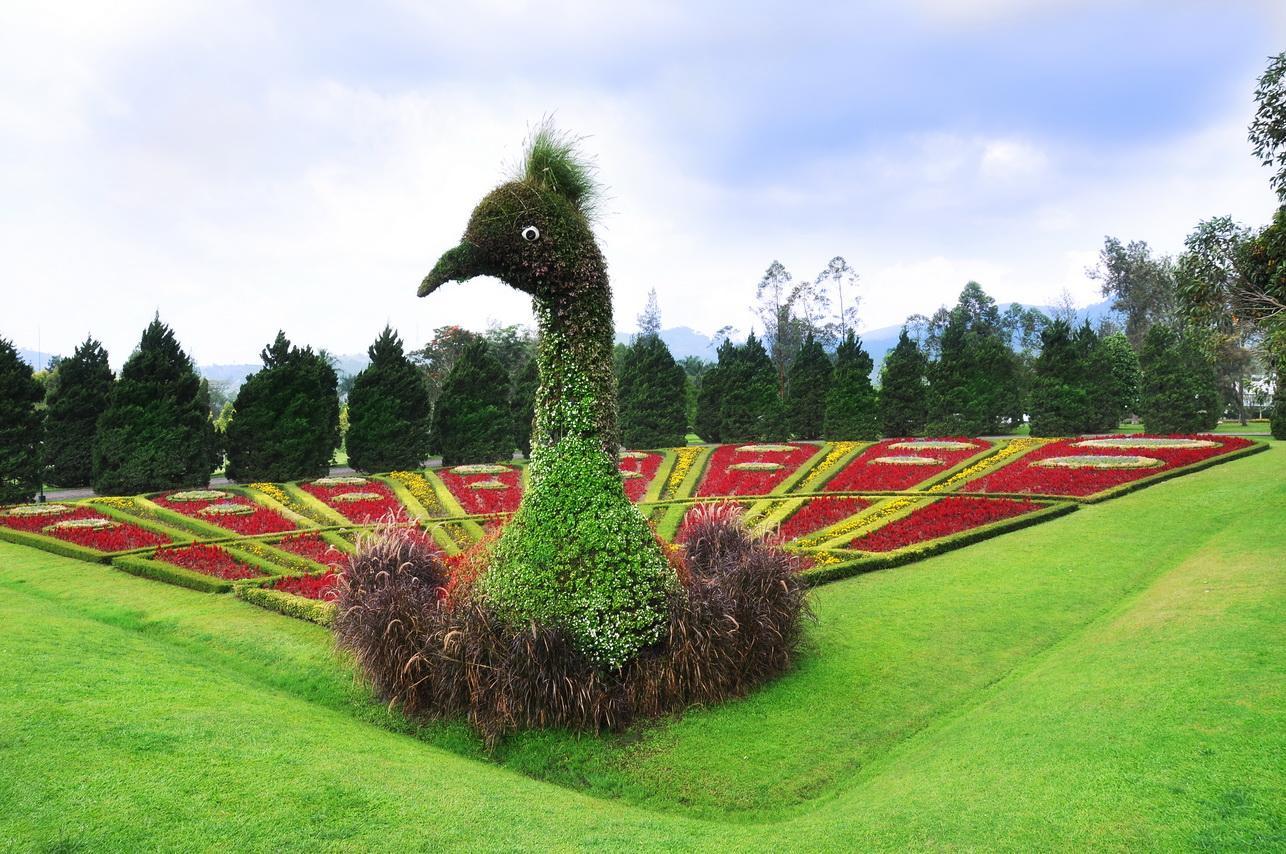 Ada apa saja di Taman Bunga Nusantara
