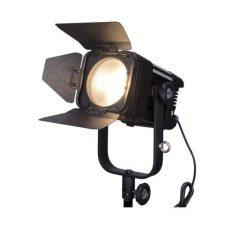 Ledgo LG-D300C - projecteur fresnel